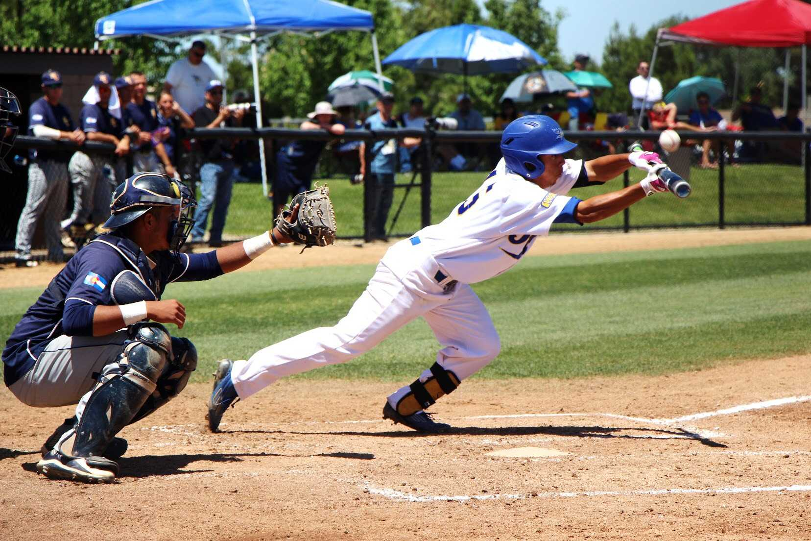 Carter's walk-off RBI double lifts Roadrunners past Bears