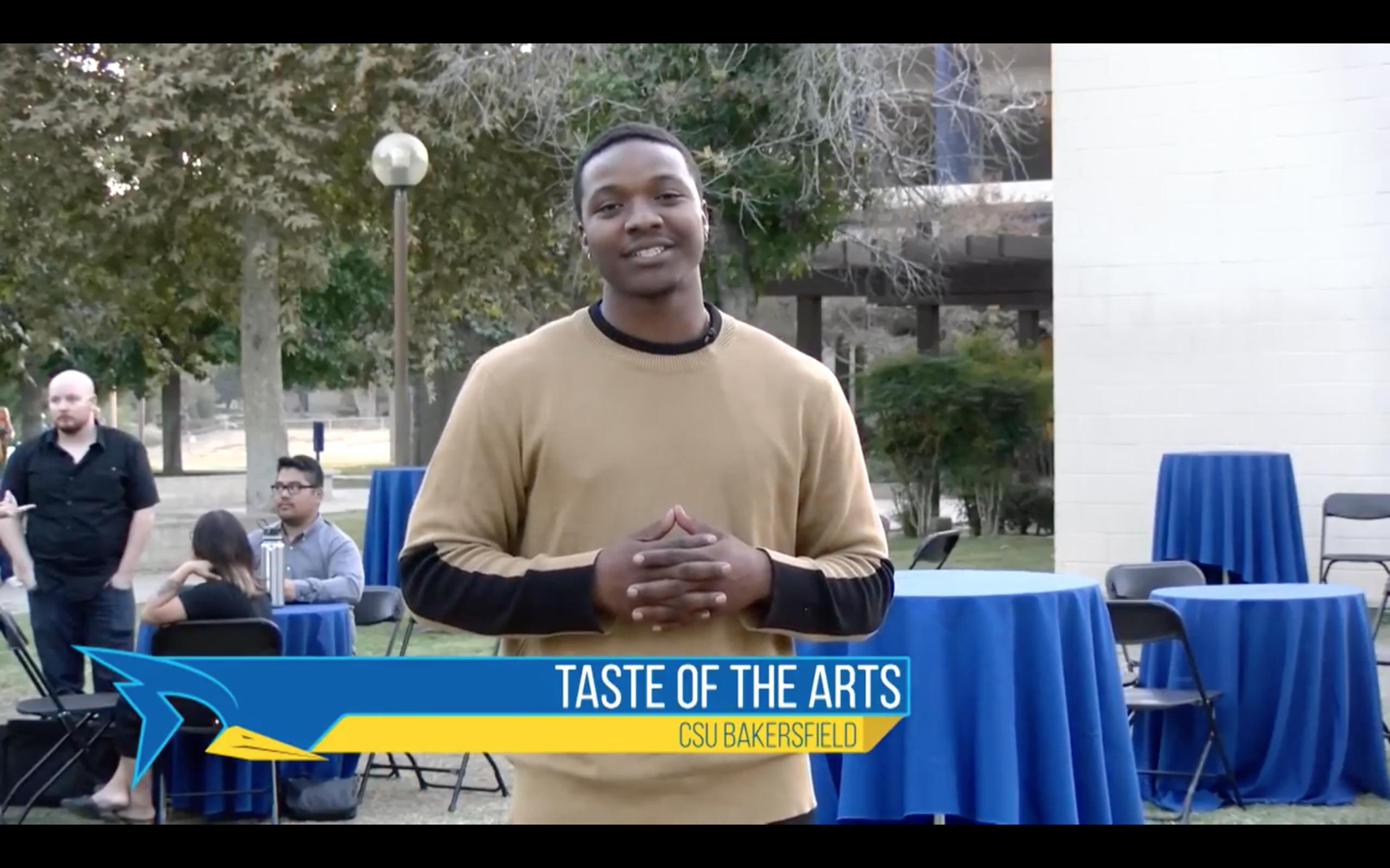 2017 Taste of the Arts