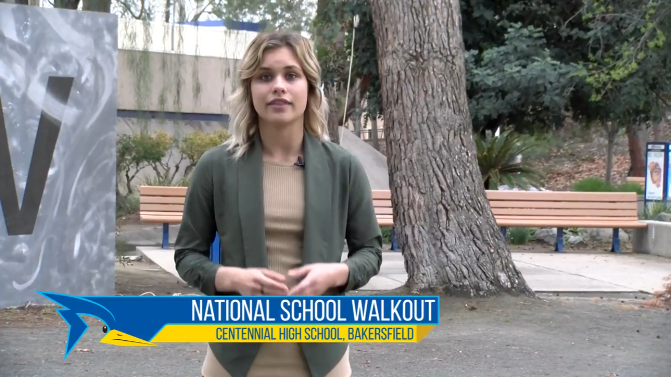 National School Walkout Against Gun Violence
