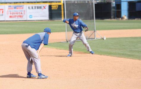 Baseball season back and in full swing