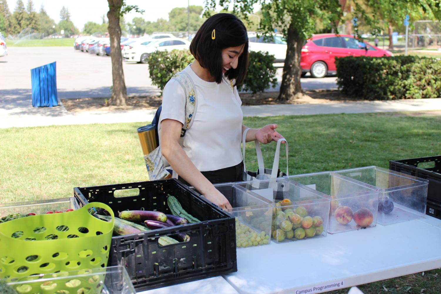 Stephani Williams/The Runner. On Tuesday, September 3, 2019, Brandy Plaat, a Biology major, stocks up on fruit at the pop-up Food Pantry. Located near the Student Union and the Café.