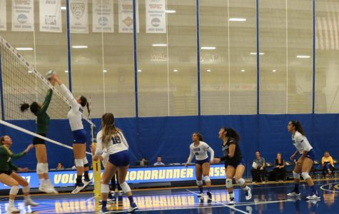 Volleyball puts up a fight during Roadrunner Classic