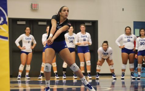 Breakout performances save Senior Night for volleyball team